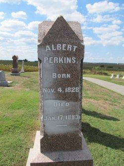 Albert Perkins
