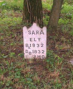 Sara Ely