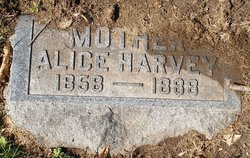 Alice Harvey