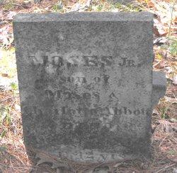 Moses Abbott, Jr