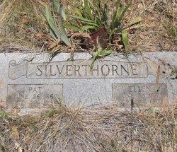 Pat Silverthorne