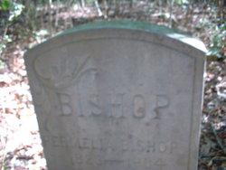 Permilla Bishop