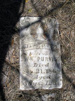 Narissa M. Purvis