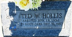 Theodore W. Ted Hollis