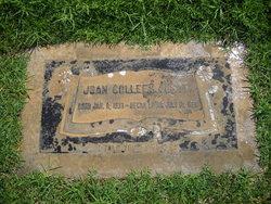 Joan Colleen <i>Young</i> Austin