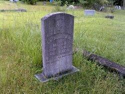 Gwendolyn M. Alfred