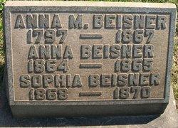 Anna Beisner