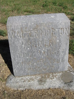 Walter Morton Briner
