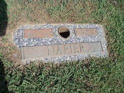 Lyvina J. Napier