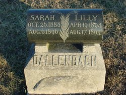 Sarah Rosetta Dallenbach