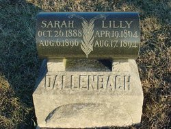Lilly Dallenbach