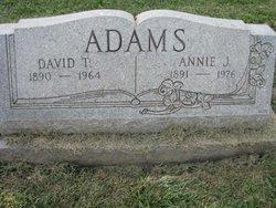David T Adams