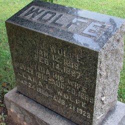 Andrew J Wolfe