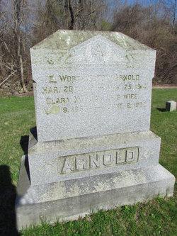 E Worthington Arnold