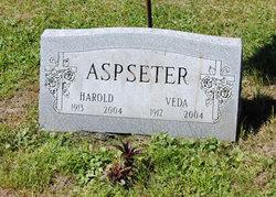 Veda <i>Shinn</i> Aspseter