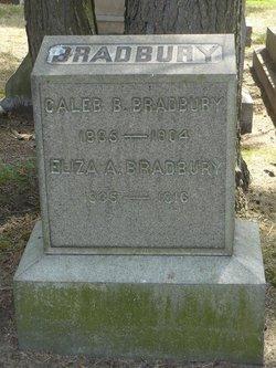 Alice E Bradbury