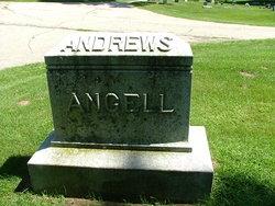 Daniel W Andrews