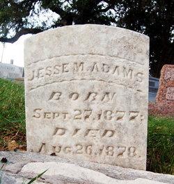 Jesse M. Adams