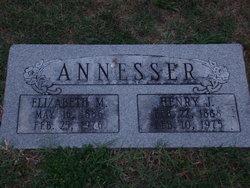 Henry J Annesser