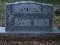 James C Anderson