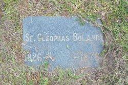 Sr Cleophas Boland