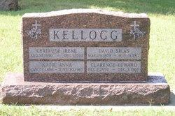 David S. Kellogg
