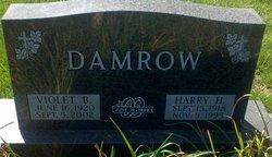 Violet B Damrow