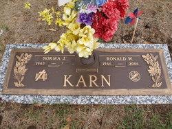 Ronald W Karn