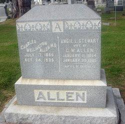Angie L. <i>Stewart</i> Allen