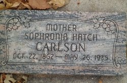 Sophronia <i>Hatch</i> Carlson