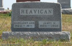 Michael James Pete Heavican