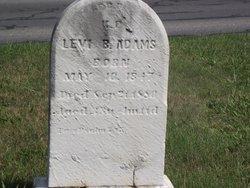 Levi B Adams