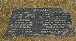 Rosario Aguayo