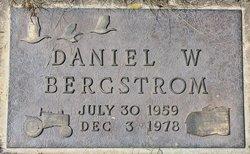 Daniel W Bergstrom