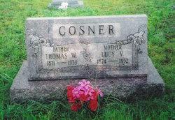 Lucy Virginia <i>Baker</i> Cosner