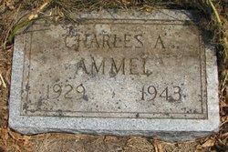 Charles A. Ammel