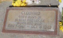 Baby Boys Cloward