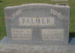 Susie Palmer