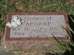 Shawn M Apthorp
