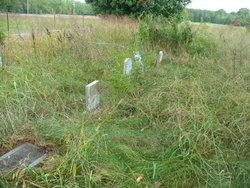 Stephenson Cemetery (Coleman Harvey Rd)