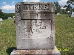 Hester Ann <i>Booton</i> Adkins