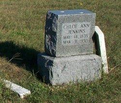 Chloe Ann <i>Redman</i> Jenkins
