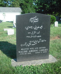 Malihe Javadi Abedini