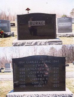 Alice Isadore Burke