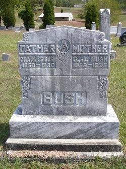 Charles Asberry Bush