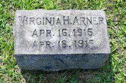 Virginia H Arner