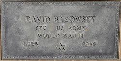 David Brzowsky