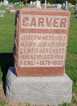 Horatio Carver
