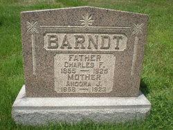Andora J Barndt