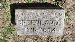Aaron Horler Greenland